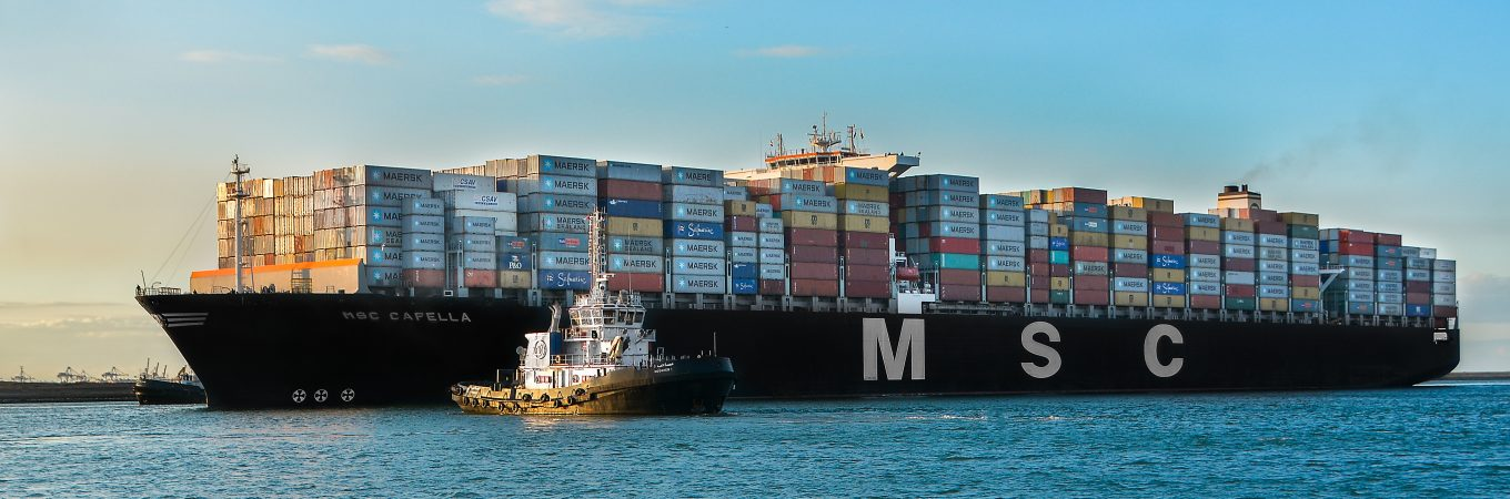 MSC and ZIM commence new feeder services at Suez Canal Container Terminal