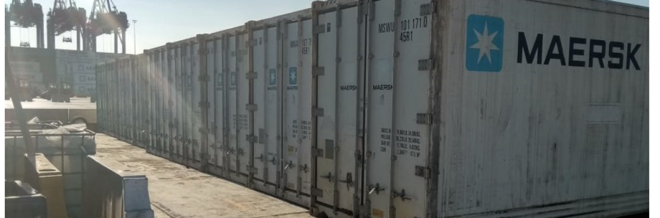 The Suez Canal Container Terminal opened a reefer container inspection and repair hub that improved operational efficiency and presented new business.